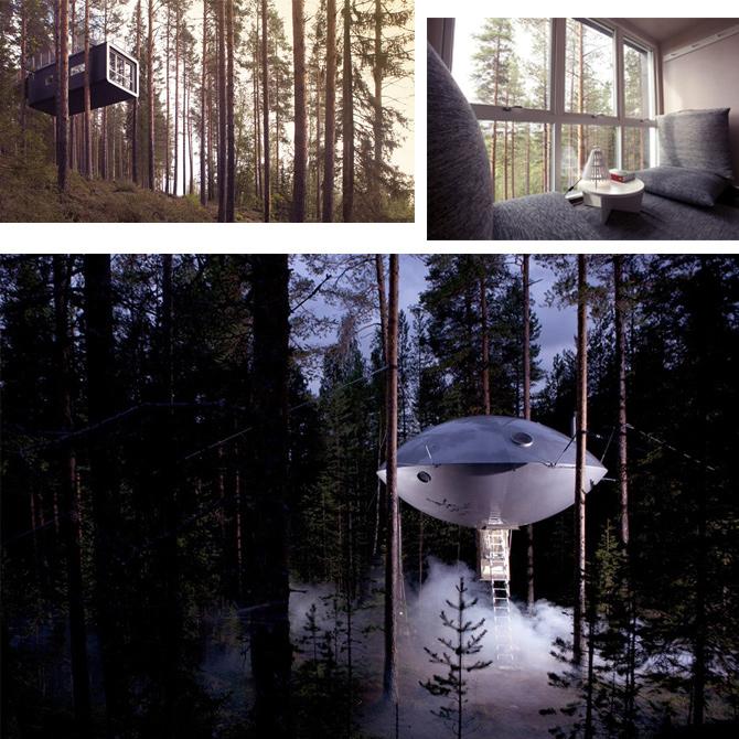 Baumhäuser im Wald